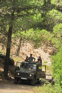 JeepSafariDay1MAB079_511x768